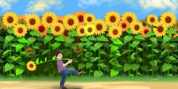 夏天的向日葵图片