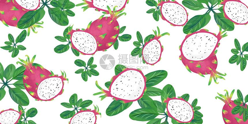 火龙果水果背景图片