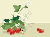 立夏草莓插图图片