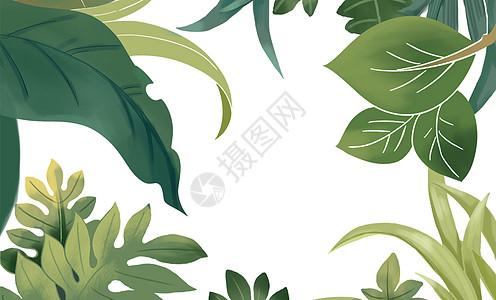 水彩热带叶子图片