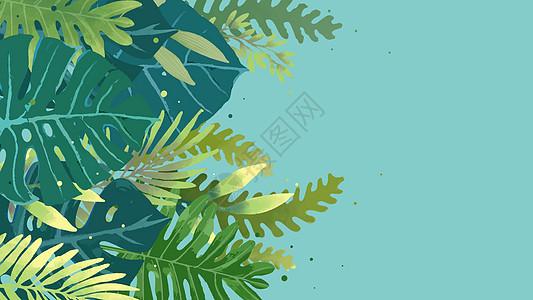 植物素材背景图片