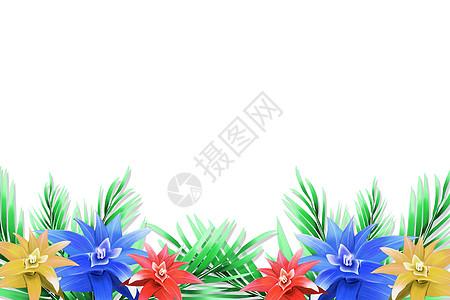 花卉植物简约背景图片