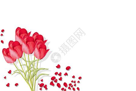 玫瑰花简约背景图片