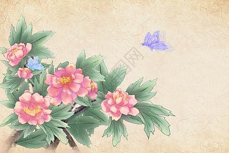 中国风牡丹背景图片
