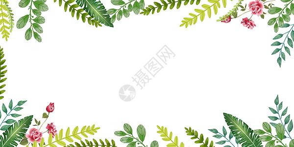 水彩植物背景图片
