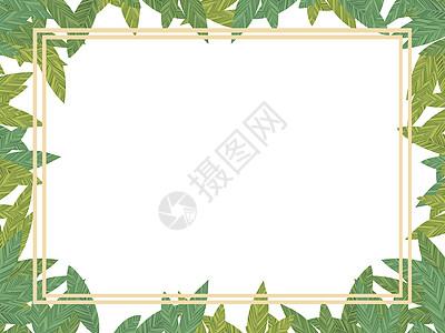 叶子边框图片