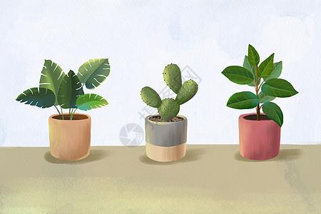 清新植物素材图片