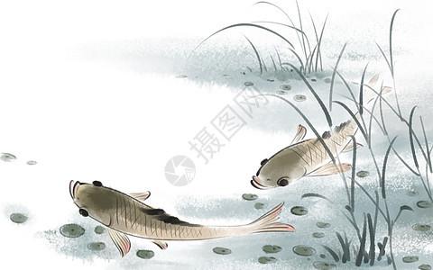 中国风鱼图片