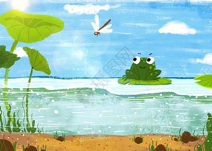 夏天池塘青蛙图片
