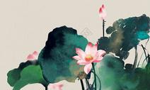中国风荷花素材图片