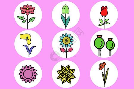 花卉图标图片