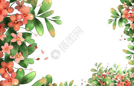 花卉素材背景图片