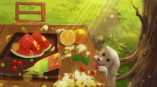 夏天的水果图片