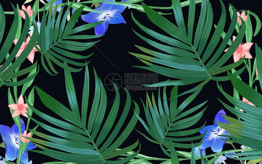 夏季植物背景图片