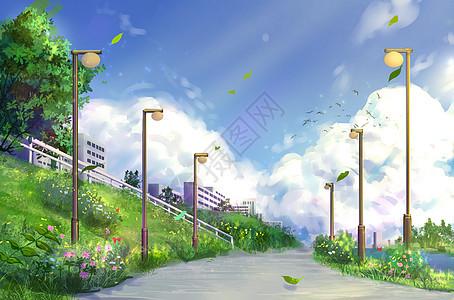 夏日城市图片