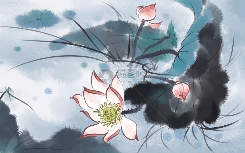中国风荷花图片