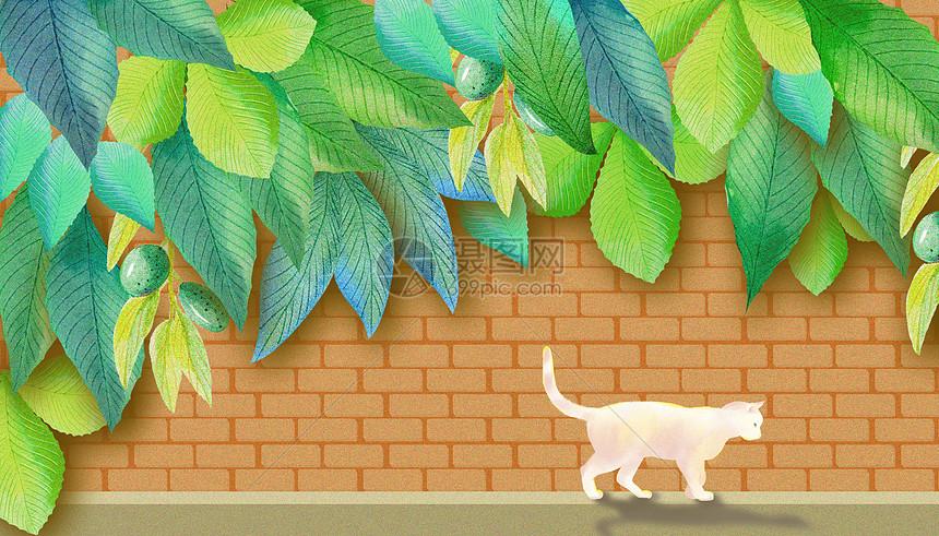 绿植与猫图片