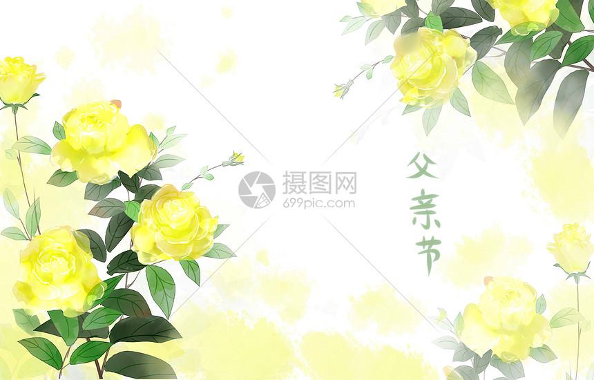 父亲节之花图片