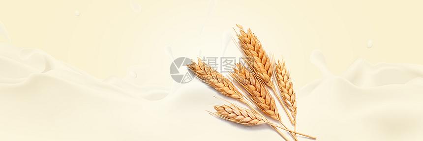 牛奶小麦banner图片