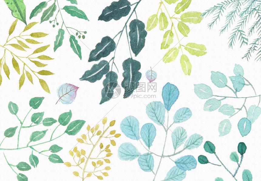 森系小清新叶子背景素材图片