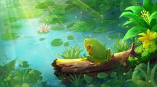 夏天夏季夏至荷塘池塘青蛙图片