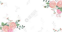 唯美清新花朵背景图片