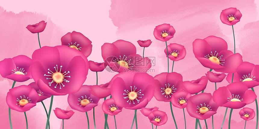 花卉背景banner图片