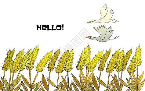 手绘水彩麦子图片