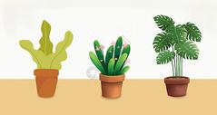 手绘植物盆栽图片