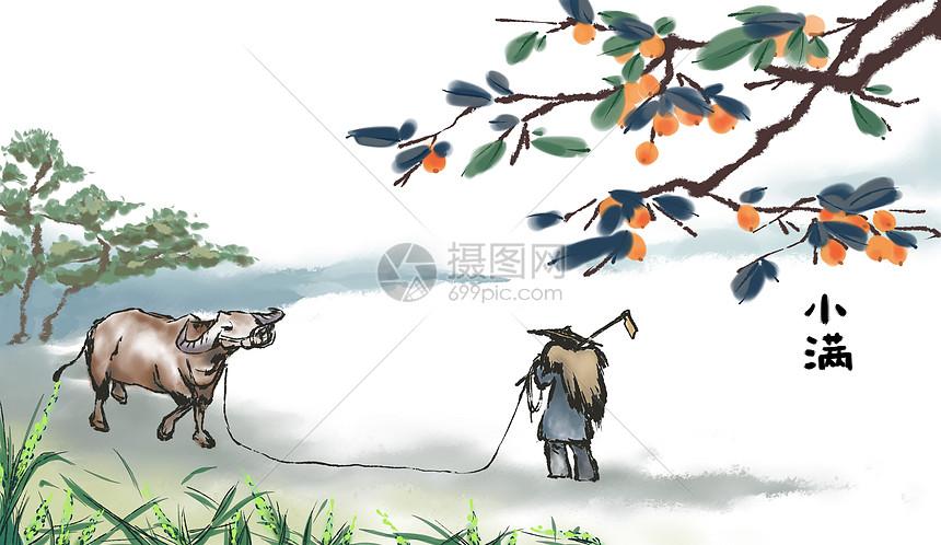 中国风小满节气图片
