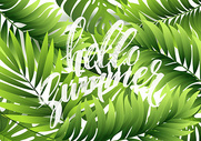 绿植叶子背景图片