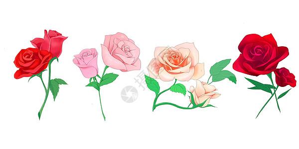 唯美玫瑰花素材图片