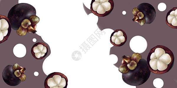 热带水果山竹壁纸插画图片