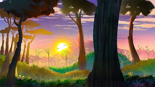 森林里的黄昏图片