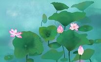 清新夏季荷塘插画图片