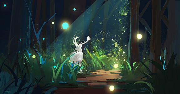 夜间森林里的麋鹿图片