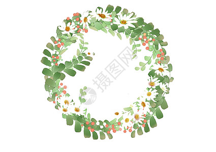 白色雏菊花环图片