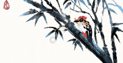 竹子与鸟图片