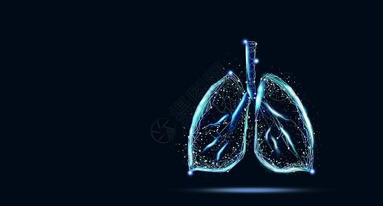 保护肺图片