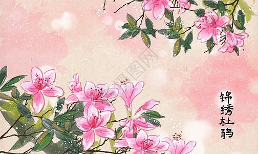 中国风锦绣杜鹃花插画图片