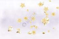 花朵背景图片