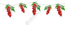 水果水彩手绘二分之一留白图片