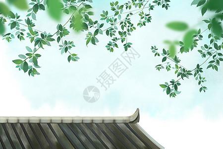 屋顶树叶图片