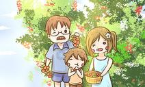 小暑与摘荔枝图片