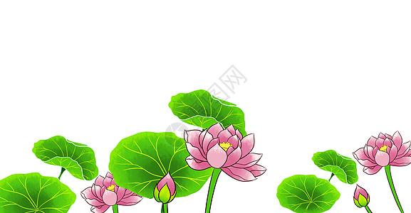 唯美夏日荷塘莲花插画图片