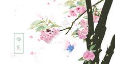 水彩风手绘樱花插画图片