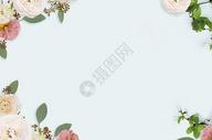 浅色花卉背景图片