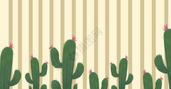 清新植物仙人掌插画图片