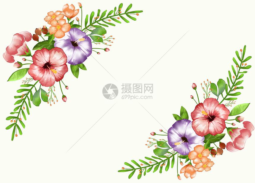 清新花卉插画图片