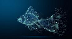 游动的金鱼图片